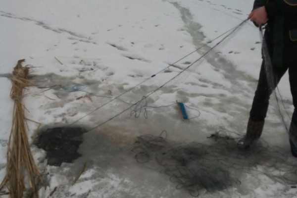 За тиждень на Рівненщині вилучено 64 заборонених знарядь лову