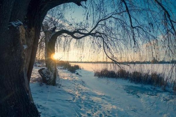 Sinoptik: Погода в Рівному та Рівненській області на середу, 30 січня