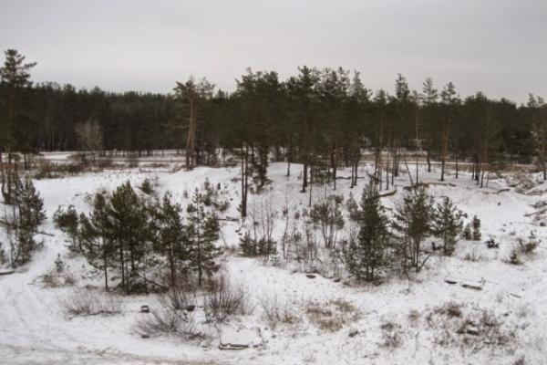 Sinoptik: Погода в Рівному та Рівненській області на четвер, 14 лютого