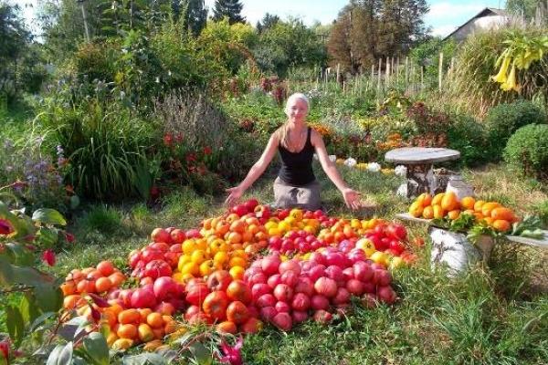 У Рівненській бібліотеці відбудеться семінар із органічного землеробства