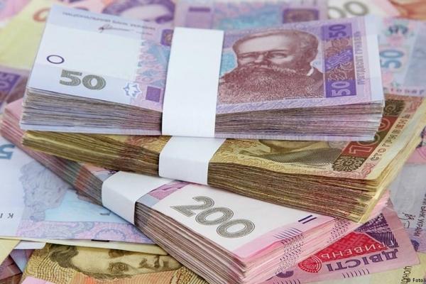 Фінансову допомогу одержали 190 господарств та понад 8 тисяч селян Рівненщини
