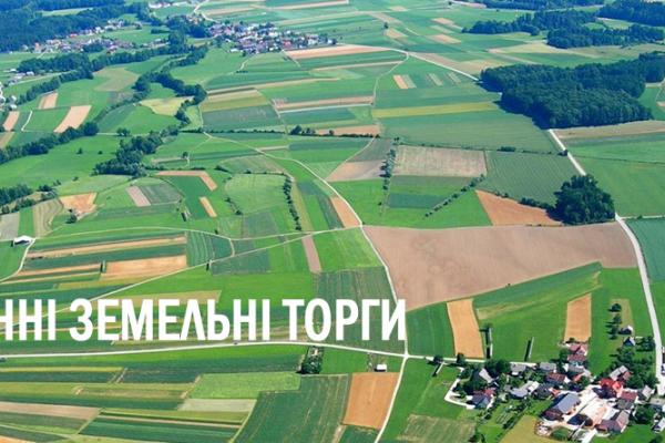 На Рівненщині в січні на електронних земельних торгах продано права оренди 12-ти земельних ділянок