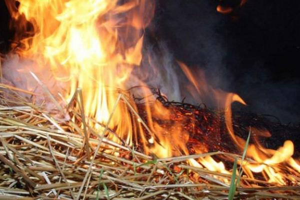 Три тонни соломи згоріло у Квасилові