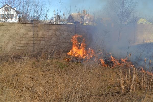 У Рівному рятувальники гасили суху траву (ФОТО)