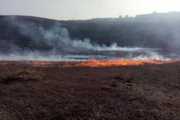 За минулу добу рівненські рятувальники тричі виїжджали на гасіння сухої трави (Фото)