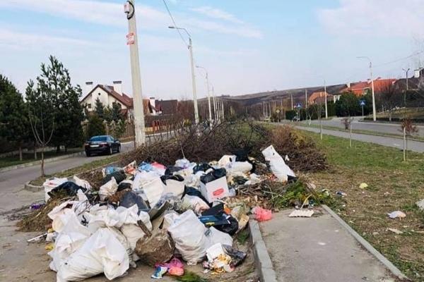 У Рівному прибирають сміття не всюди (Фотофакт)