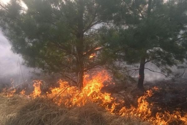 У Здолбунівському районі рятувальники навчались гасінню пожеж