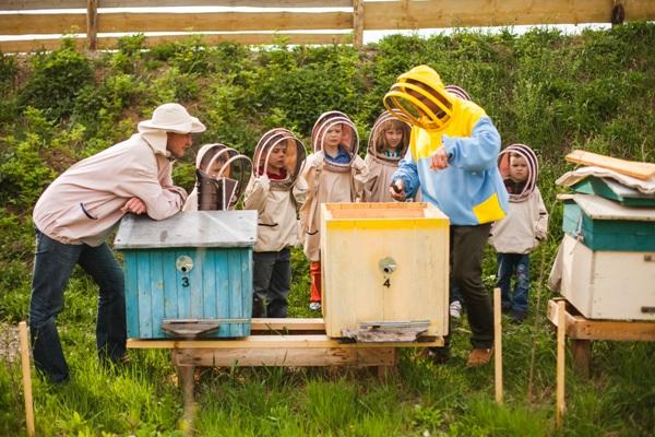 На Рівненщині зберуться бджолярі із усієї Західної України
