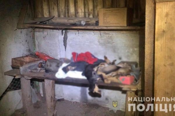 Поліцейські встановлюють обставини загибелі собак на Здолбунівщині (Фото, відео)