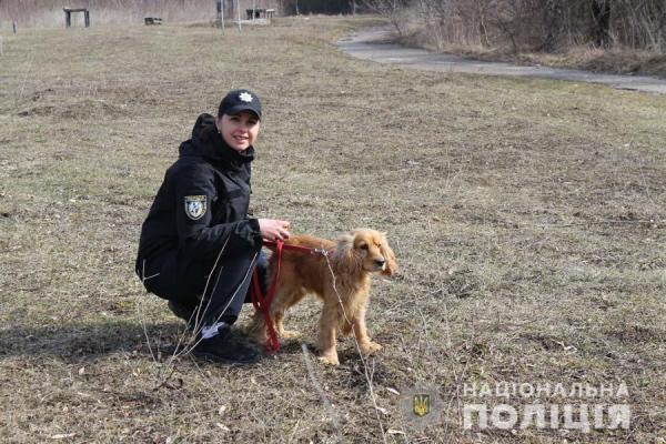 Службовий пес знайшов метамфетамін у жителя Рівненського району