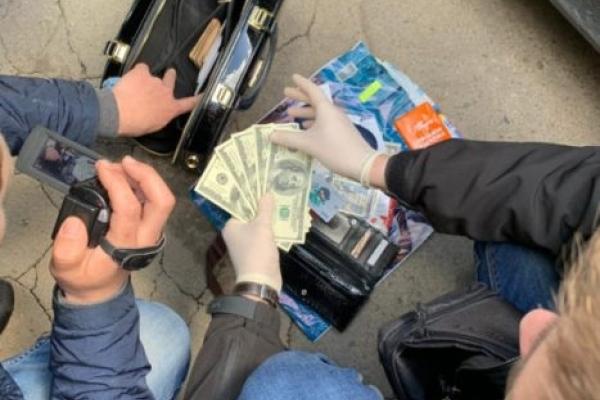 В машині екс-очільниці Здолбунівської податкової провели обшук