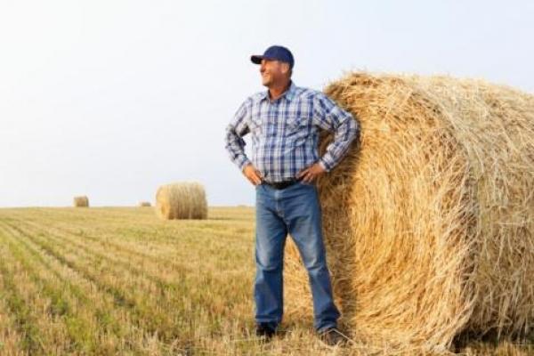 Фермери Рівненщини можуть отримати 40 тисяч гривень
