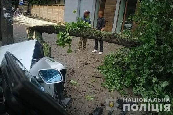 Уникаючи зіткнення з іншою автівкою, водій врізався в дерево