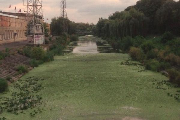 Рівняни сподіваються побачити річку Устю чистою й повноводою, як сто літ тому