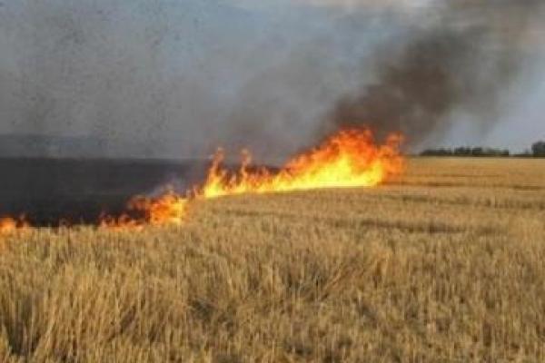На Рівненщині - підвищений рівень пожежної небезпеки