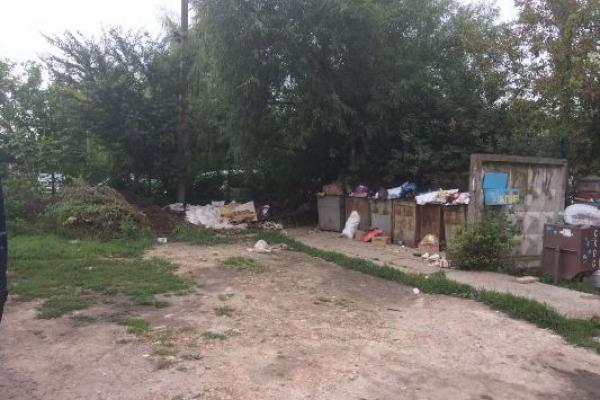 Квасилівці організували суботник, прибрали територію та скаржаться на владу, що не вивозить сміття