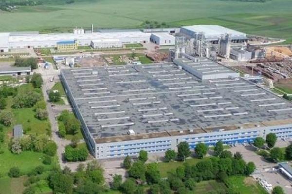 У Городку на Рівненщині будуватимуть потужний деревообробний завод