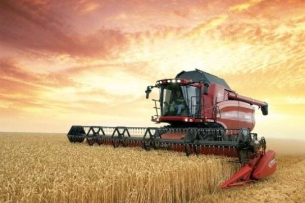 Рівненщина вже з урожаєм: збирання зернових завершують