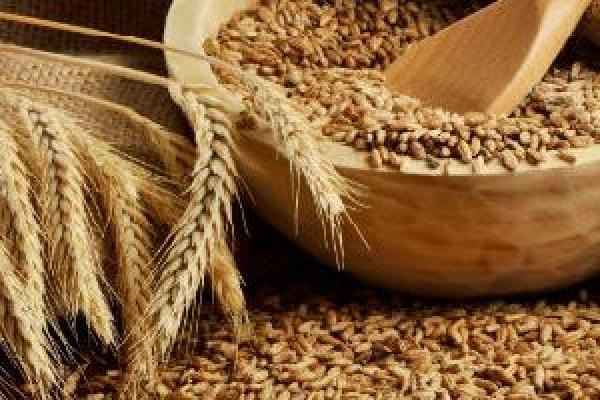 На Рівненщині фермери констатують обвал цін на зерно
