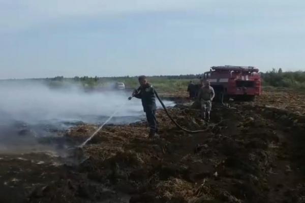 Масштабні пожежі спалахнули у північних районах Рівненщини (Відео)