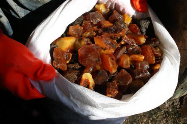 У жителів Рівненщини вилучено понад півтонни каміння бурштину