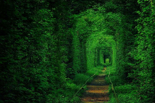 У Києві відтворять клеванський Тунель кохання