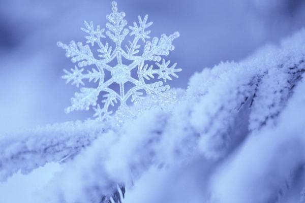 Коли на Рівненщині випаде перший сніг?