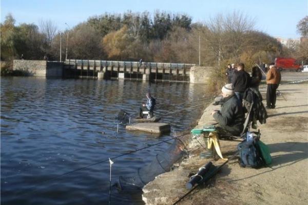 Міська влада Рівного обіцяє розпочати процес очищення Басівкутської водойми