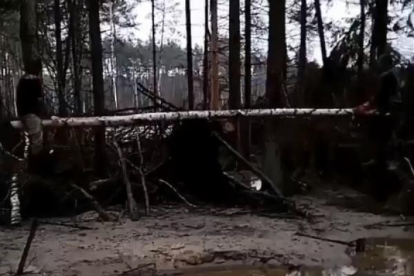 Гойдалка над прірвою: діти бурштинокопачів відпочивають у лісах Рівненщини ектремально (Відео)