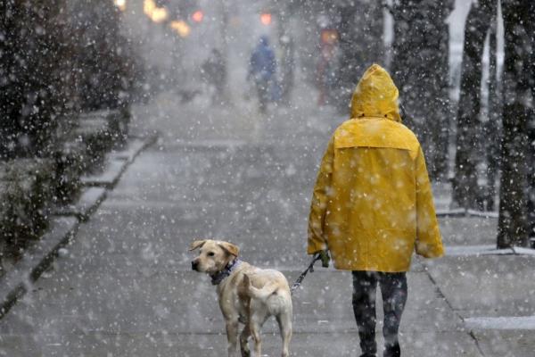 Сьогодні у Рівному очікується сніг, хуртовина та ожеледиця на дорогах