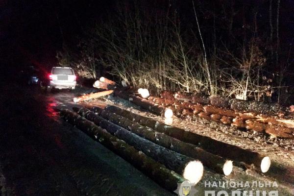 Невідомі напали на працівника лісгоспу на Рівненщині (Фото)