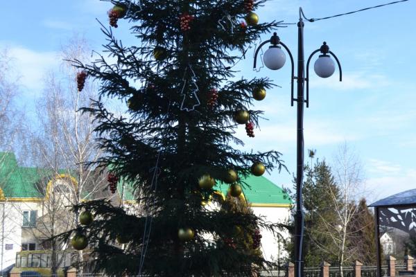 На Рівненщині викрали новорічну інсталяцію (фото, відео)