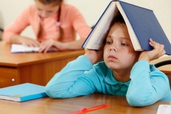 Діти з сіл й надалі зможуть навчатися у дитсадках і школах Рівного (відео)