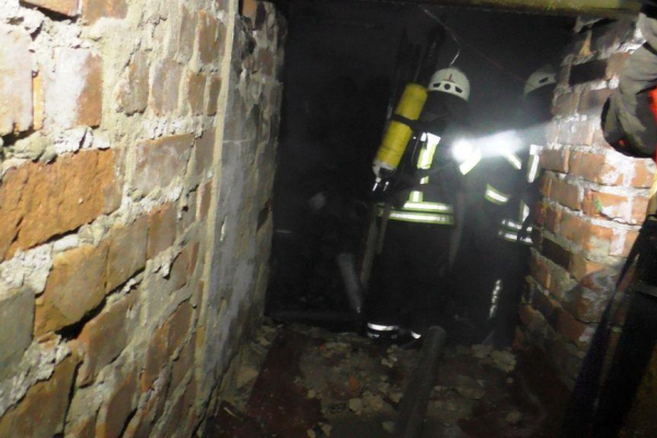 Рівненські рятувальники визволили двох безхатченків із підвалу