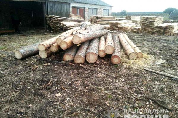 Державні підприємства Рівненської області запровадили систему електронного обліку деревини