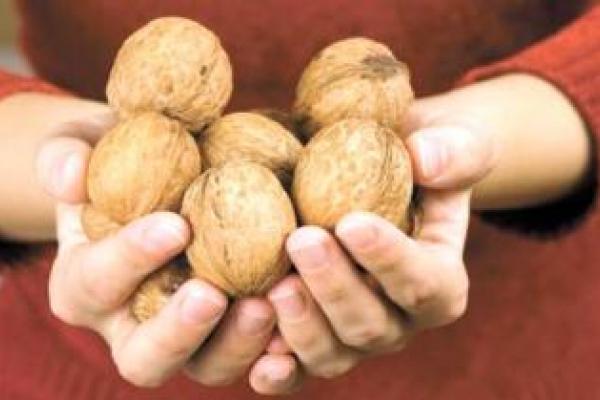 Жителі Здолбунівщини «продали» горіхів на 30 тисяч гривень