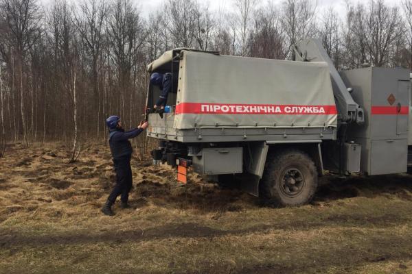 На Володимиреччині піротехніки ДСНС знищили близько тридцяти боєприпасів