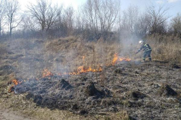 Рятувальники Рівненщини б'ють на сполох і просять людей на палити сухостій