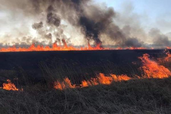 Рівненщина у вогні: палії сухої трави платитимуть у 18 разів більше