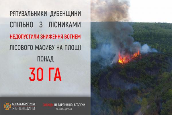 Дубенщина: врятовано від пожежі 30 га лісу