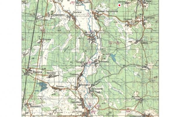 Держгеонадра виставили на аукціон дві ділянки на Рівненщині, де можливий видобуток бурштину