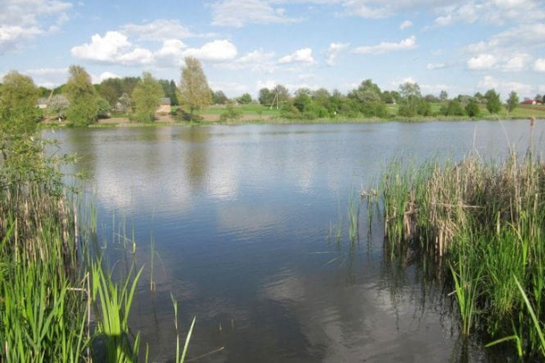 На Березнівщині у місцевій водоймі потонула неповнолітня