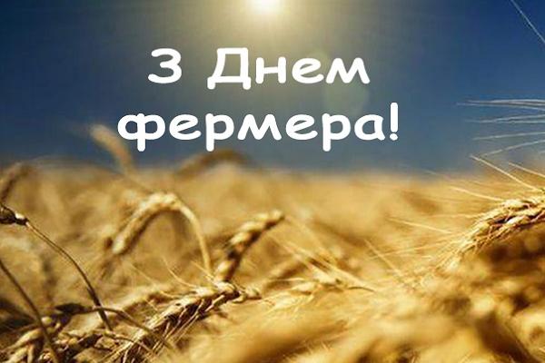 368 фермерських господарств Рівненщини вперше відзначають своє професійне свято