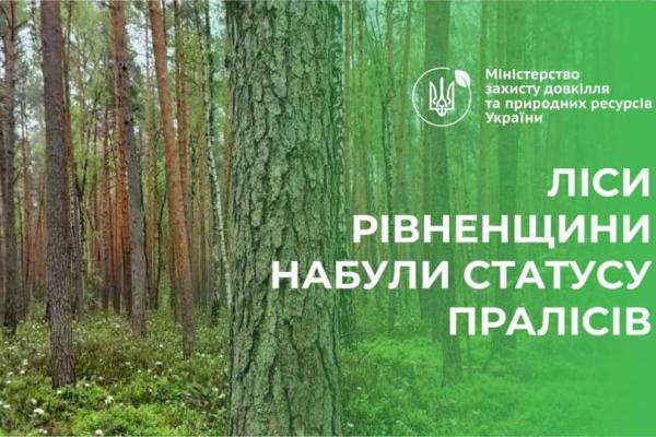 Рівненські ліси стали пралісами