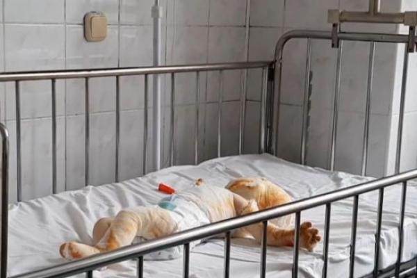У Клесові на Рівненщині сталася біда, дитина потребує термінової допомоги!