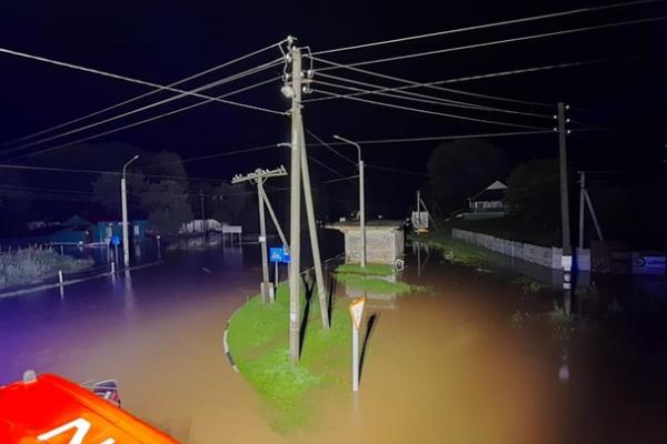Ураган повалив дерева та знеструмив села на Рівненщині (фото)