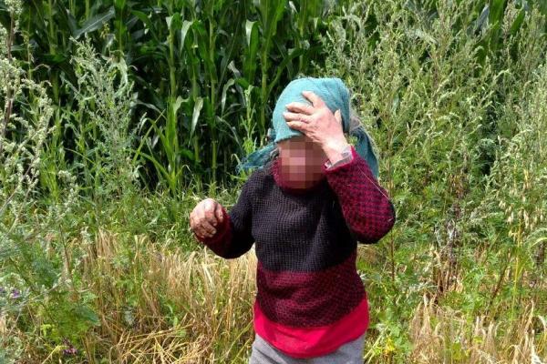 На Дубенщині зниклу безвісти пенсіонерку знайшли за дві години