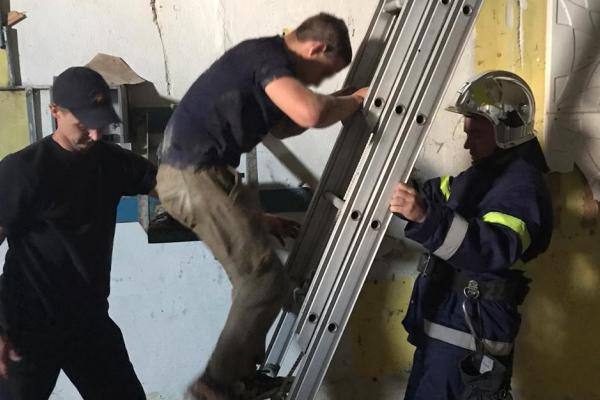 На Острожчині рятувальники зняли шукача металу з висоти