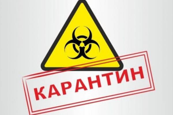 На Костопільщині посилили карантин на сім днів