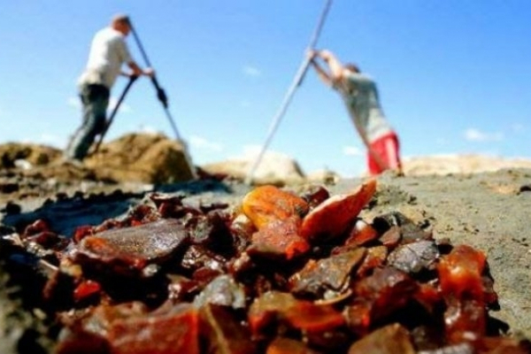 На Рівненщині продали три ділянки для видобутку бурштину за 33 мільйони гривень